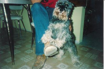 Josh 1991 001